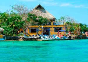 4 Islas del Rosario Premium + Plancton